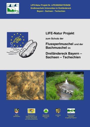 LIFE-Natur Projekt Flussperlmuschel und der Bachmuschel ... - Europa
