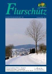 Ausgabe 255 vom 19.01.2013 - Gemeinde Morsbach