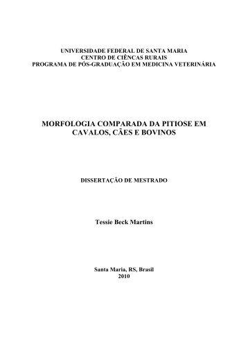 Tessie Beck Martins - UFSM