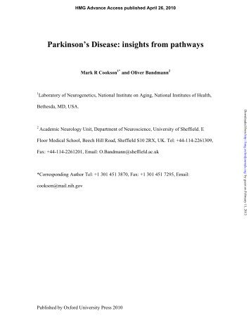 the neurobiology of parkinsons disease essay Home - science - research - neuroscience and neurological disorders cellular neurobiology laboratory parkinson's disease.