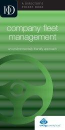 company fleet management - Director