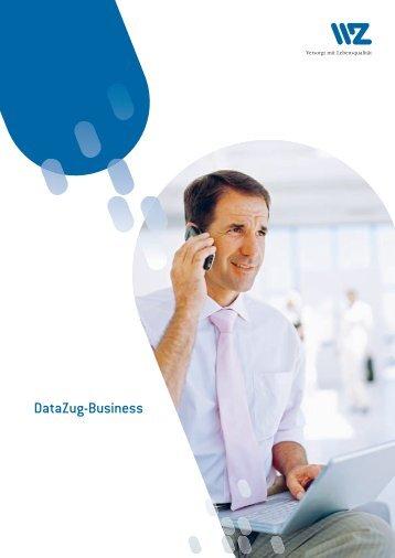 Datazug-Business - Elektra Sins