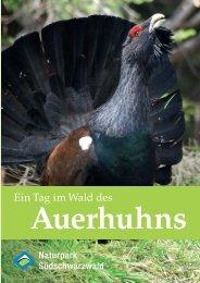 Ein Tag im Wald des Auerhuhns - Naturpark Südschwarzwald