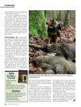 UNSERE HUNDE - Wild und Hund - Seite 5