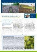 lignatur - Schleswig-Holsteinische Landesforsten - Seite 5