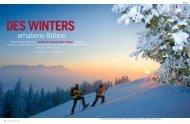 Des Winters erhabene Bühne»; Schweizer Familie ... - DAVID COULIN