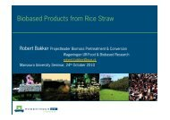 Biobased Products from Rice Straw - Bioenergy at Wageningen UR