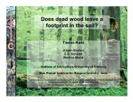 Dead wood - International Symposium On dynamics and ecologicals ...