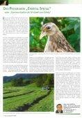 Das Land Steiermark - Seite 6