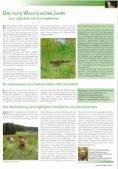 Das Land Steiermark - Seite 7
