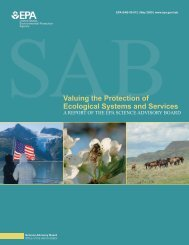Valuing the Protection of Ecological Systems and Services Report
