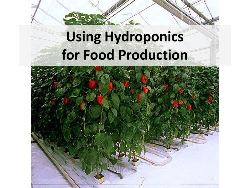 Hydroponic Systems: Engineering and Design