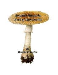 Amanita Muscaria; Herb of Immortality - Ambrosia Society