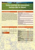 Rodino® (PDF 643,7 KB) - Bayer CropScience - Page 2