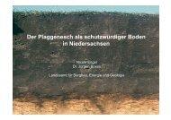Der Plaggenesch als schutzwürdiger Boden in ... - Bodenkunde