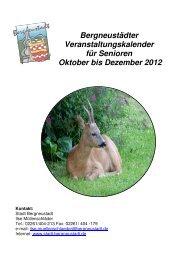 2012 DIN A5 mit Foto IV - Stadt Bergneustadt