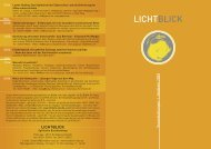 Lichtblick-Netz
