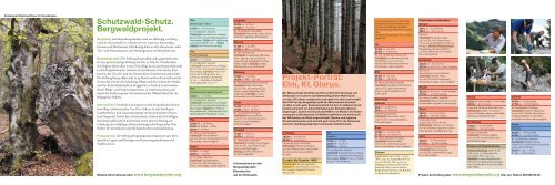 Schutzwald-Schutz. Bergwaldprojekt. Projekt-Porträt: Elm, Kt. Glarus.