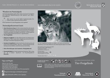 """Faltblatt """"Tier- Freigelände"""" - Nationalpark Bayerischer Wald"""