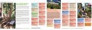 Jahresprogramm - Bergwaldprojekt