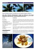Genussmeile 18 - im Facettenreich - Seite 7