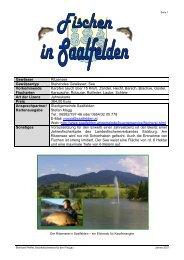 Fischen in Saalfelden - Fischersfritz Angelshop