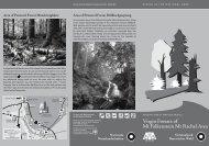 Virgin Forests of Mt Falkenstein Mt Rachel Area - Nationalpark ...