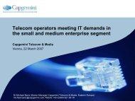 Telecom operators meeting IT demands in the small and medium ...