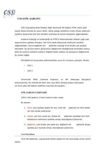 CSS E-Book indir
