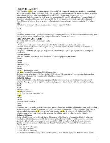 CSS (STİL ŞABLON)