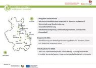 Ausblick auf 2013 - ELEKTRISCH BEWEGT. Mobilitätsnetz ...