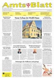 Neue Schau im Wolff-Haus - Saale - Stadt Halle (Saale)