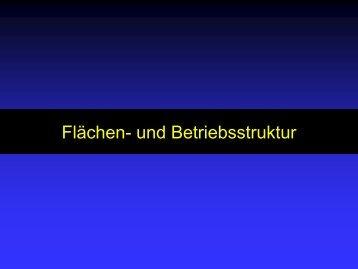 Flächen- und Betriebsstruktur - Bayerische Landesanstalt für ...