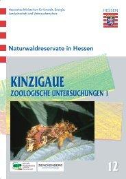 download pdf (7 MB) - Nordwestdeutsche Forstliche Versuchsanstalt