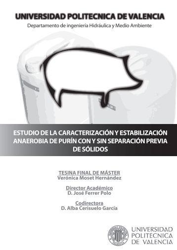 Tesina master pere morell riunet for Universidad valencia master