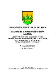stadtgemeinde saalfelden räumliches entwicklungskonzept entwurf ...