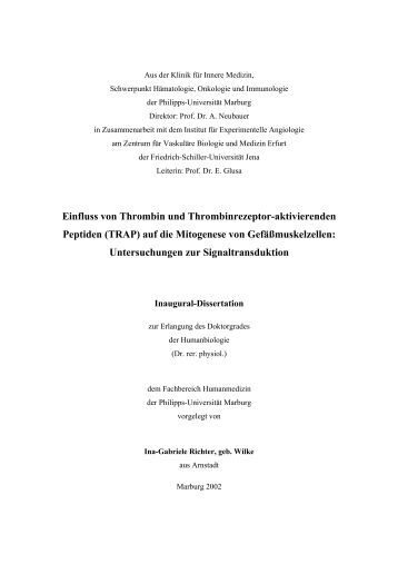ub marburg dissertationen