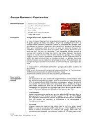 Granges découverte – Visperterminen - Fondation pour le ...