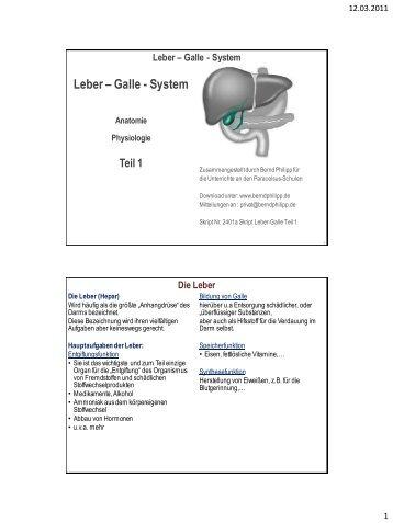Ziemlich Leber Gallen System Anatomie Fotos - Anatomie und ...