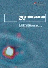 FORSCHUNGSBERICHT 2004 - Fachhochschule Nordwestschweiz