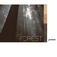 Forest - Sichenia