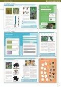 oder als PDF (45 MB) zum Download - Verlag E. Dorner - Page 7