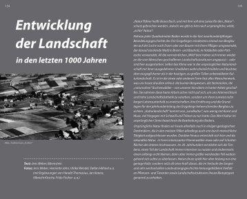 Entwicklung der Landschaft - Alte Salzstrasse