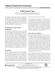 Fall Lawn Care - Publications and Educational Resources - Virginia ...