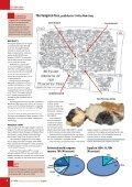 Tungsten - Mining Journal - Page 4