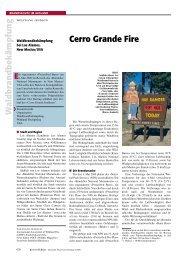 Cerro Grande Fire - Wolfgang Jendsch