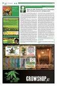 THC verpasst Top Ten - Hanfjournal - Seite 4
