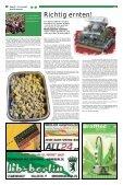 THC verpasst Top Ten - Hanfjournal - Seite 6