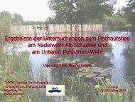 Untersuchungen zum Fischaufstieg am Nadelwehr Alt ... - MUGV