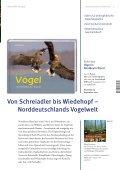 herbst | 2012 - Steffen Verlag - Seite 3
